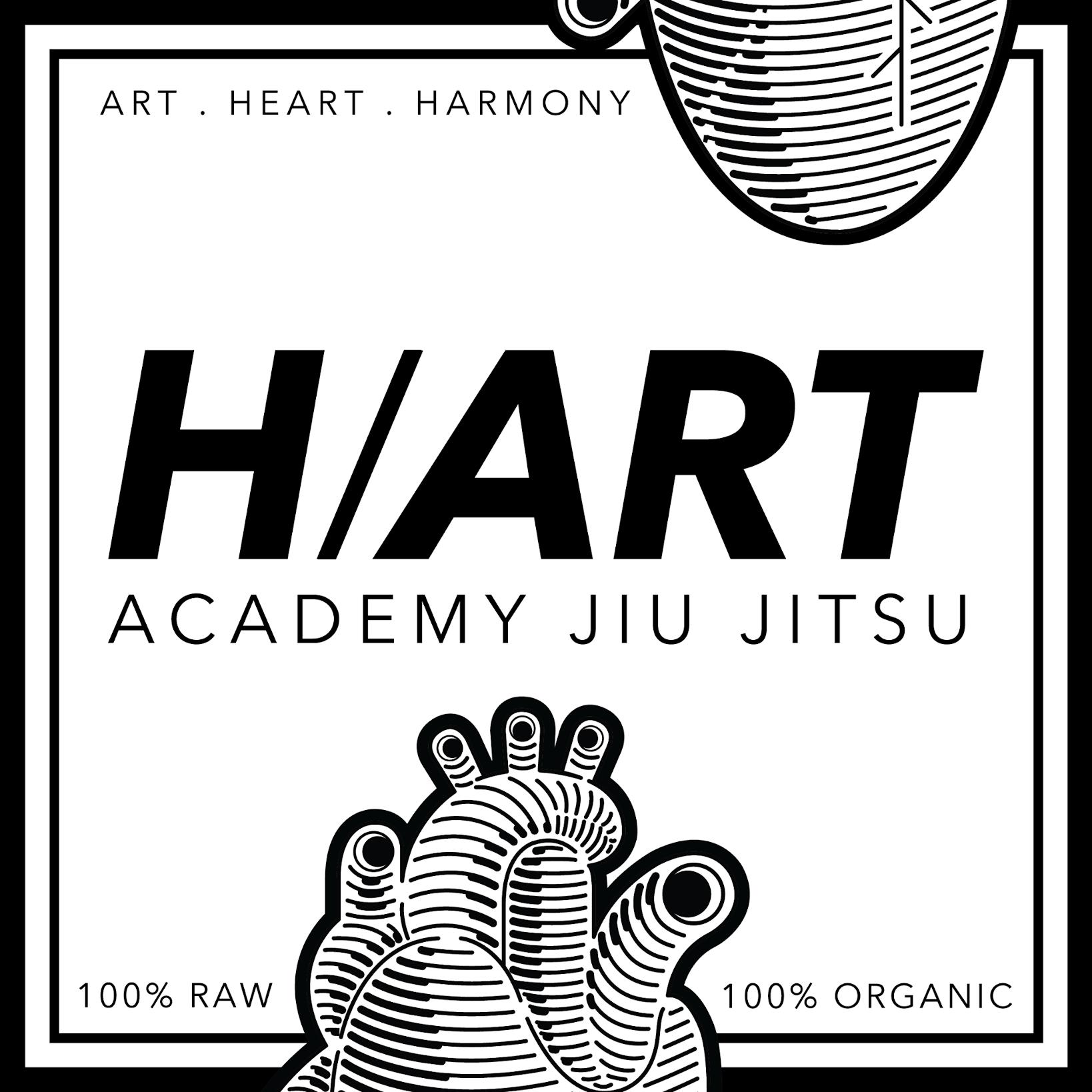 H/Art Academy Jiu Jitsu